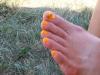 Cub toes