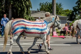 A horse of a different color in Harrisburg, Oregon parade