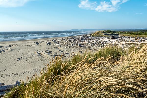 Beach Near Lighthouse