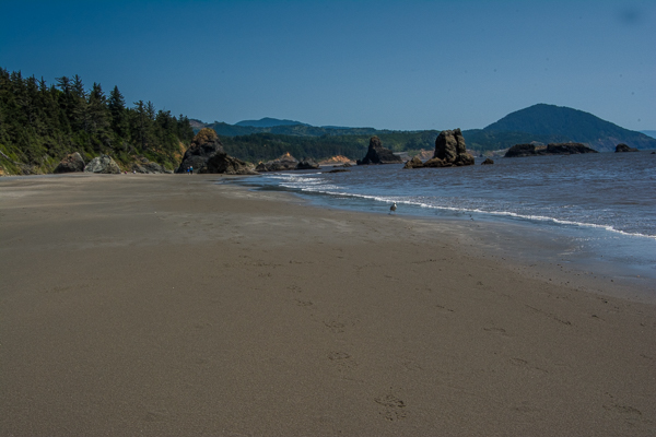 Port Orford Beach