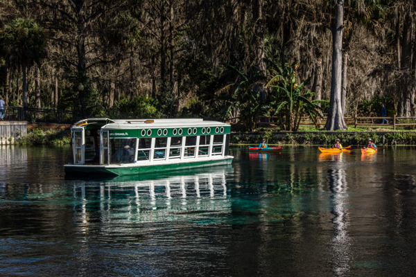 Glass Bottom boats at Silver Springs are new to my tour list of Florida great places.