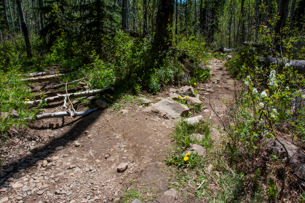 Can you tell which trail NOT to take?