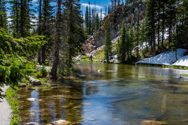 Stream through the Snowy Range