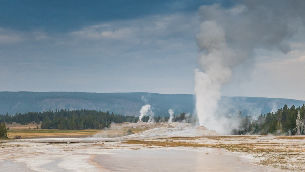 Old Faithful is not the only geyser that we watch erupt.  This one surprises us on our morning walk.